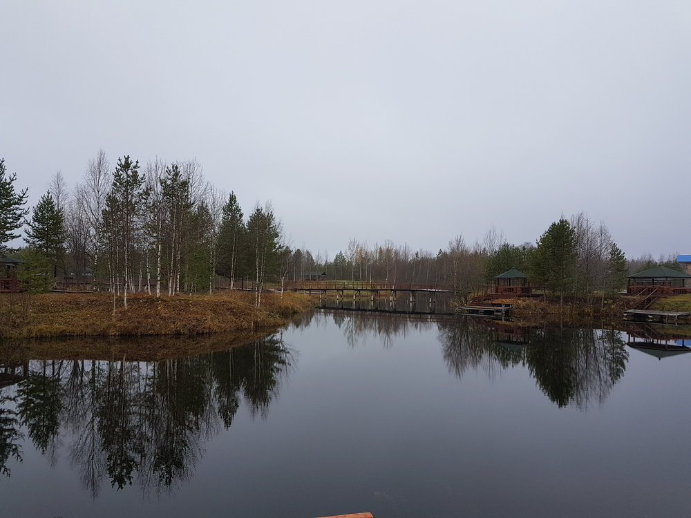 Поморская осень. Конец октября на русском Севере. Унылее не бывает картин…